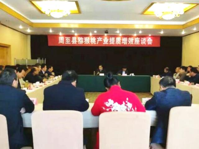 周至县召开猕猴桃提质增效座谈会,共谋产业发展大计